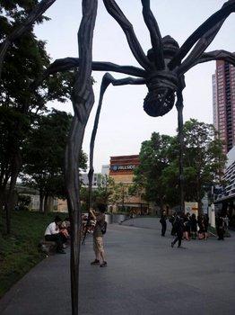 六本木蜘蛛.JPG